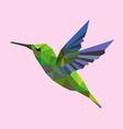 Humming bird low polygon vector image