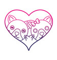 line cute cat couple animal together inside the vector image vector image