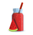 watermelon smoothie bottle icon cartoon style vector image