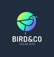 bird logo design with circle shape concept vector image