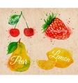 Fruit watercolor cherry lemon strawberry pear in vector image