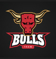 modern professional bull logo for a sport team vector image vector image