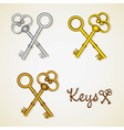 set of old keys gold and silver vector image vector image