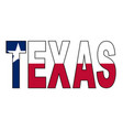 texas text flag vector image vector image