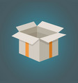 carton box delivery packaging vector image vector image