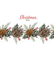 christmas pattern cones leaves and berries on vector image