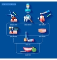 Flat Infographic Dentist vector image