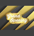 grand opening business ceremony vector image