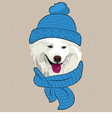 hipster Samoyed dog smile vector image vector image