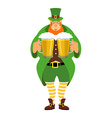 Leprechaun and beer Good leprechaun keeps two mugs vector image