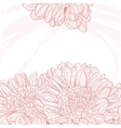 Line drawings pink chrysanthemum grunge background vector image vector image