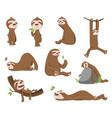 set cute baby sloth adorable cartoon animals vector image