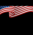 usa insignia on black vector image vector image