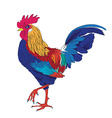 Colored rooster vector image vector image
