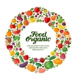 fruit and vegetable icons organic food vector image vector image
