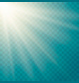 lens flare light effect vector image