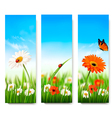 Nature summer banners with colorful flowers and vector image vector image