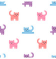 pattern with colorful cats on white background vector image vector image