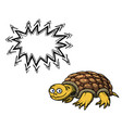 turtle-100 vector image vector image