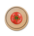 3d realistic juicy tomato on a round vector image vector image