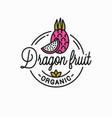 dragon fruit logo round linear slice vector image vector image