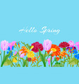 hello spring floral pink background with flowers vector image vector image