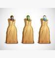 beer bottles in paper bags vector image vector image