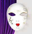 carnival mask vector image vector image