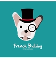 French bulldog design vector image