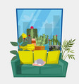 interior living room with plants and cat on vector image vector image