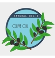 Sticker with olives branches vector image