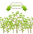 Background with garden trees Design for cards vector image vector image