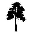 black silhouette high tree with crown simple vector image vector image