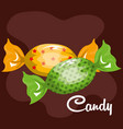 candy sweet green and yellow with chocolate vector image