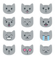 grey cats with different emotions isolated vector image
