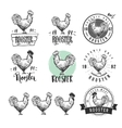 Rooster Chicken product logotypes set Hen meat vector image vector image