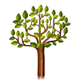 tree with glossy leaves vector image vector image