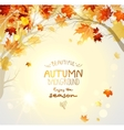 Beautiful autumn background with branches vector image vector image