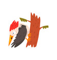 cute woodpecker sitting on a tree and looking down vector image vector image