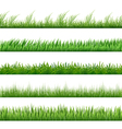 green grass pattern set macro borders isolated vector image