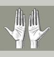 pair female hands palm up with clenched fingers vector image vector image