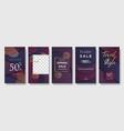 set instagram stories sale banner background vector image vector image