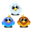 set of funny colorful animated birds with big vector image vector image