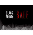 Black Friday sale text vector image vector image