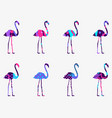 flamingo with a pattern of geometric shapes vector image vector image