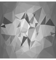 Grey Background vector image vector image