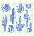 hand drawn wild cacti plants set on blue vector image