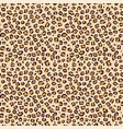 leopard seamless print pattern animal skin vector image vector image