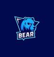 logo bear e sport and sport style vector image
