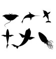 silhouettes of sea creatures vector image vector image